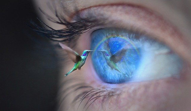 Experimental Innovation: Are You Using A Bird's-Eye View Or A Worm's-Eye View?